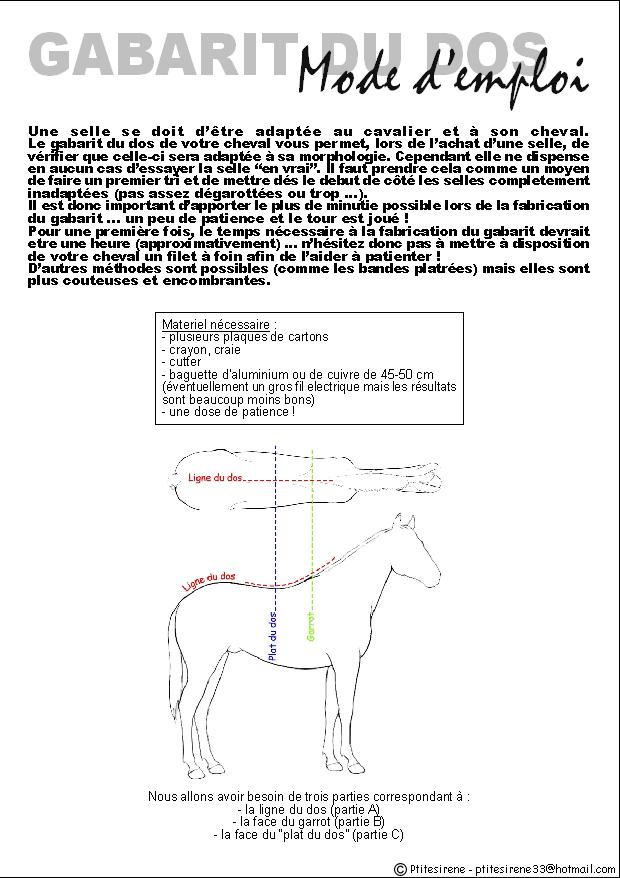 Comment savoir si la selle est adaptée à son cheval... Gabarit1