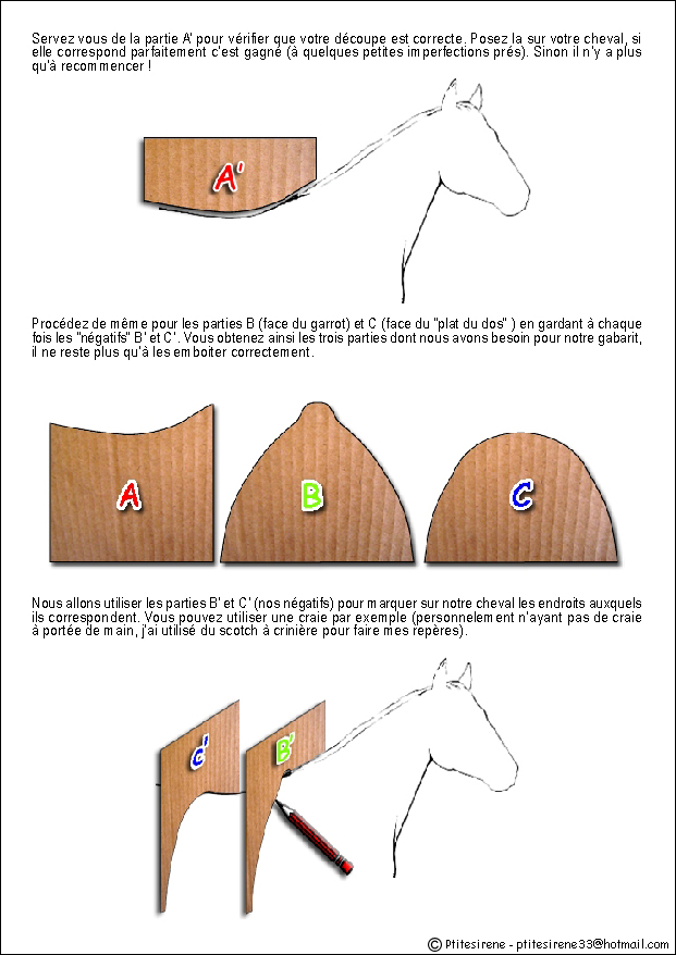 Comment savoir si la selle est adaptée à son cheval... Gabarit3
